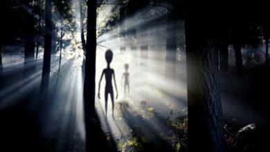 Photo of Shape-Shifting Alien Escapes Area 51