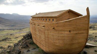 Photo of Covid-19 Discovered on Noah's Ark??