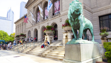 Photo of Chicago Art Institute Fires All Museum Guides Because There Were Too Many Whites